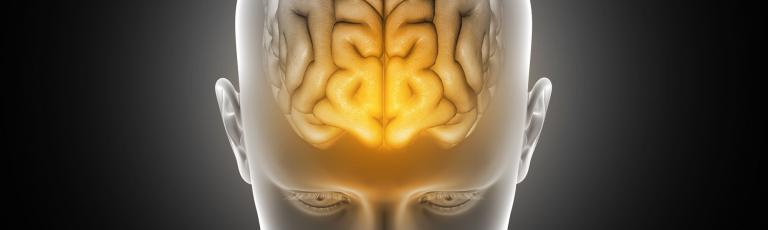 Neurosciences cliniques